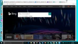 Bing Basket Search Results