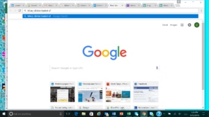 Google Basket Search Results